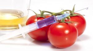 Cyber-Action contre le lobby OGM et pro-agriculture industrielle La vérité sur la Ferme en Ville